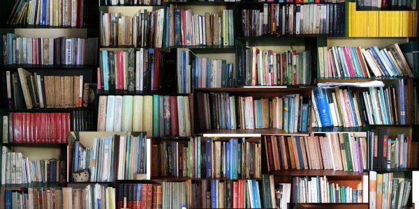 biblioteca trastero